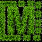 médiaClub Green